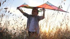 El niño pequeño hermoso que se coloca entre la hierba sostiene una cometa del juguete sobre su cabeza representa que las moscas e almacen de metraje de vídeo