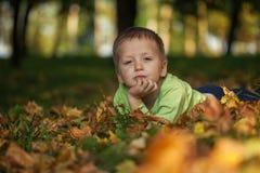 El niño pequeño lindo está jugando con las hojas en parque del otoño Foto de archivo libre de regalías