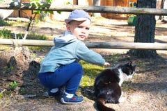 El niño pequeño lindo juega con el gatito blanco y negro, movimientos él al aire libre fotos de archivo libres de regalías