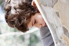 El niño pequeño mira abajo de detrás un árbol de eucalipto Imagen de archivo libre de regalías