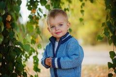 El niño pequeño precioso del retrato en un suéter hecho punto está jugando behi fotos de archivo
