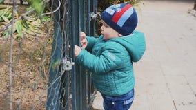 El niño pequeño se inclina a través de puerta con las barras de metal El niño caucásico está intentando salir de yarda cerrada Te metrajes