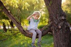 El niño pequeño se sienta en una rama del árbol y de miradas en la distancia Los juegos del niño Tiempo activo de la familia en l foto de archivo libre de regalías