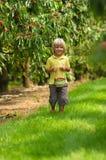 El niño pequeño sonriente con la cesta de la cereza que camina en cereza cultiva un huerto Fotografía de archivo