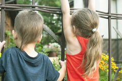 El niño pequeño y la muchacha mira el café con curiosidad de detrás la cerca Imagen de archivo