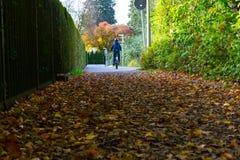 El niño que monta su bici en la calle en otoño con muchos se va Fotografía de archivo libre de regalías