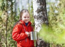 El niño recoge la savia del abedul en bosque de la primavera Fotografía de archivo