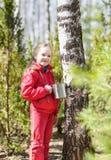 El niño recoge la savia del abedul en bosque de la primavera Foto de archivo libre de regalías