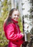 El niño recoge la savia del abedul en el bosque Imagenes de archivo