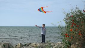 El niño se coloca en la playa y los juegos con una cometa juegos para el muchacho almacen de video