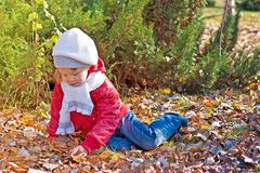 El niño se sienta en la tierra en parque del otoño Foto de archivo libre de regalías