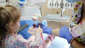 El niño sostiene el cepillo de dientes y limpia los dientes de un mandíbula artificial en manos del dentista en oficina con el eq metrajes