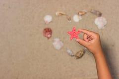 El niño sostiene estrellas de mar rojas Mano del niño con las estrellas de mar Shelles del mar en la playa arenosa Fondo del vera Imagen de archivo libre de regalías