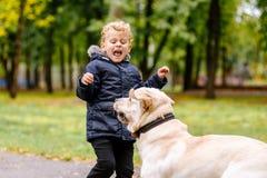 El niño tiene miedo del perro foto de archivo libre de regalías