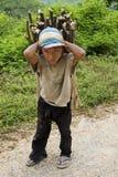 El niño transporta la leña, Laos fotos de archivo