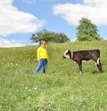 El niño y el becerro foto de archivo libre de regalías