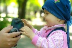 El niño y la paloma Foto de archivo libre de regalías