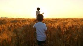 El niño y su madre están corriendo alrededor del campo de trigo contra la puesta del sol almacen de video