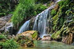 EL Nicho de cascade au Cuba en parc de natioanl de jungle Photo stock