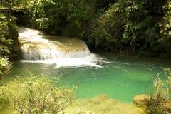 El Nicho waterfall Stock Image