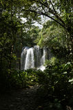 El Nicho Waterfall, Cuba Royalty Free Stock Images