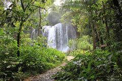 El Nicho waterfall Royalty Free Stock Photography