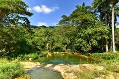 El Nicho Waterfalls in Cuba Stock Photos