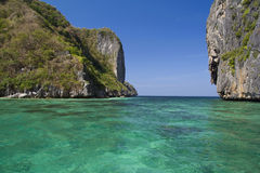 EL Nido Foto de Stock Royalty Free