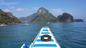 EL Nido Fotos de Stock Royalty Free