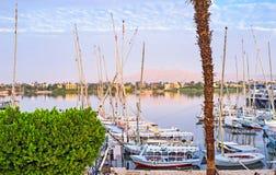El Nilo por la mañana Foto de archivo libre de regalías