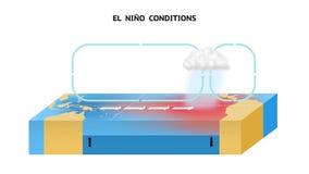 El nino del EL condiciona en el Océano Pacífico ecuatorial ilustración del vector