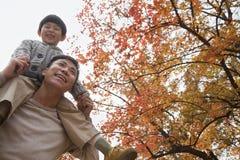 El niño pequeño que se sienta en sus padres lleva a hombros, caminando a través del parque en otoño Imagen de archivo