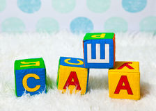 El nombre ruso Sasha se compone de los cubos suaves del bebé Foto de archivo libre de regalías