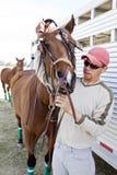 El novio ajusta el frenillo en caballo imagen de archivo libre de regalías