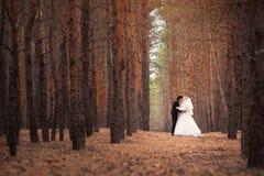 El novio de la novia está caminando en el bosque en la boda fotos de archivo