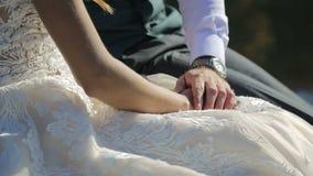 El novio lleva a cabo la mano de la novia, la acaricia suavemente Primer almacen de metraje de vídeo