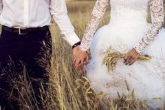 El novio y las manos del control de la novia En los anillos de bodas de los fingeres Foto de archivo libre de regalías
