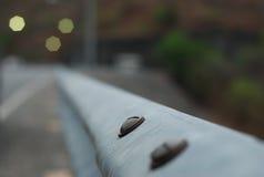 El nudo puesto en el puente de acero Imágenes de archivo libres de regalías