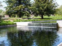 El nuevo jardín de la planta nativa en el jardín de NY Botanicle Fotografía de archivo libre de regalías