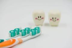 El nuevos cepillo de dientes y modelo Cute juega los dientes en odontología en un fondo blanco Fotos de archivo