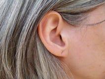 El oído de la mujer madura Fotografía de archivo libre de regalías