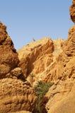 El oasis de Chebika en Túnez Imagen de archivo
