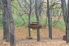 El objeto del arte es una jerarquía del ` s del cuervo Foto de archivo