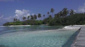 El Océano Índico, puente y palmeras contra la perspectiva de un cielo azul brillante Maldivas video almacen de video