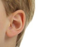 El oído. Imágenes de archivo libres de regalías