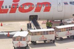 El oficial está cargando los equipajes Imagen de archivo libre de regalías