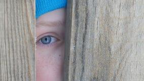 El ojo azul asustado de un adolescente mira a escondidas en la ranura o la grieta de la puerta en la cerca almacen de metraje de vídeo