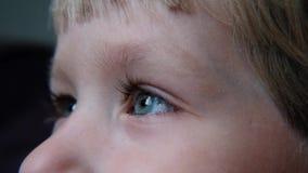 El ojo azul del niño hermoso con el tiro macro de las pestañas largas almacen de video