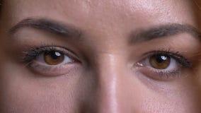 El ojo-retrato del primer de la mujer gorda de mediana edad mira en cámara tranquilamente y modesto en fondo negro almacen de video