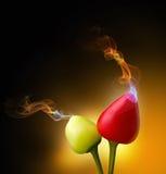 El olor que viene de la fruta de la pimienta foto de archivo libre de regalías